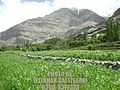 Hassanabad, Northern Areas, Pakistan also Known as Hassanabad Chorbat.jpg