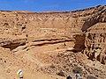 Hatira Gulch, Negev, Israel נחל חתירה, הנגב - panoramio (8).jpg