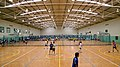 Hawkesbury Indoor Stadium - panoramio.jpg