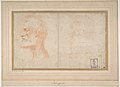 Head of a Bearded Man in Profile to Left, possibly the Portrait of the Poet Giorgio Anselmi (ca. 1459-1528), with Faint Sketch of a Skull-like Head MET DP810978.jpg