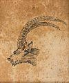 Head of an ibex. Drawing, c. 1789. Wellcome V0009138ETC.jpg