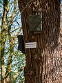 Hedeby, Busdorf (P1100654).jpg