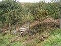 Hexworthy Mine Wheelpit - geograph.org.uk - 224689.jpg