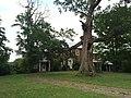 Hickory Hill Petersburg WV 2014 07 29 19.JPG