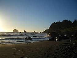 Hidden Beach in Redwood National Park, California.jpg
