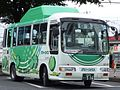 Higashimurayama Green Bus.jpg