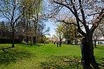 High Park, Toronto DSC 0190 (17205930208).jpg