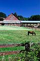 Highway 99 Barn (Lane County, Oregon scenic images) (lanDB2059).jpg