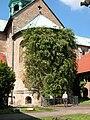 Hildesheim Rosenstock.jpg