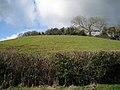 Hill above Ashill - geograph.org.uk - 1724865.jpg