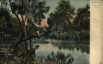 Hillsborough River (Florida) - Postcard view of the Hillsborough River in 1910