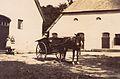 Hof Wittenborgh 1.jpeg