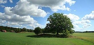 Hölö - Image: Holo Tree Pano