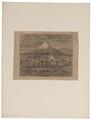 Homo sapiens - Nieuw-Zeeland - 1700-1880 - Print - Iconographia Zoologica - Special Collections University of Amsterdam - UBA01 IZ19500049.tif