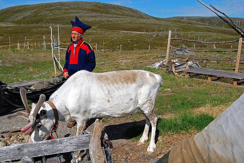 File:Honningsvåg 2013 06 09 3460 (10302412674).jpg