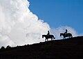 Horseback Ride up Los Cerros Estancia Dos Lunas.jpg