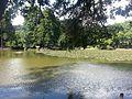 Horto Florestal de São Paulo.jpg