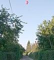 Hot Air Balloon over Upper Welland - geograph.org.uk - 557876.jpg