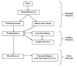 Human processor model - Image: Human Processor Model