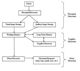 Usability - Image: Human Processor Model