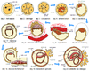 Human embryogenesis -2.png