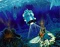 Hydrobot (artist).jpg