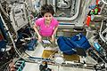 ISS-43 Samantha Cristoforetti with science equipment in the Columbus module.jpg