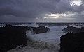 Ilha das Flores P5260153 (36010371235).jpg