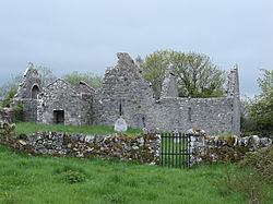 Remains of Inchicronan Priory
