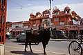 India DSC01336 (16534921598).jpg