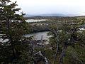 Isla Gable, Tierra del Fuego.jpg