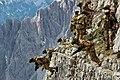 Italian Army exercise Lavaredo 2019 - 01.jpg
