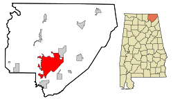 Jackson County Alabama Incorporated and Unincorporated areas Scottsboro Highlighted.svg