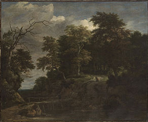 Landscape of a Forest with a Wooden Bridge