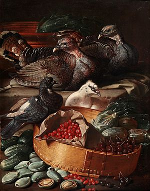 Jacob van der Kerckhoven - Still life of birds and fruit