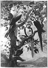 Neun Papageien und Tukane (?)