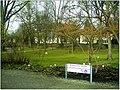 January Frost Botanic Garden Freiburg blühende China Zaubernuß - Master Botany Photography 2014 - panoramio (1).jpg