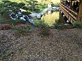 Japanese Friendship Garden (Balboa Park, San Diego) 7 2016-05-14.jpg