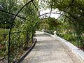 Jardín de rosas, pasaje, Parque del Oeste, Madrid, España, 2015 03.JPG