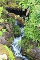 Jardin Botanique Royal Édimbourg 24.jpg