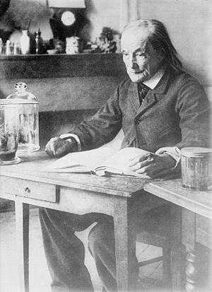 Jean-Henri Fabre - Fabre circa 1913