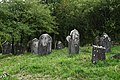 Jewish cemetery Checiny IMGP7887.jpg