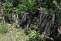 Jewish cemetery Ulanow IMGP4894.jpg