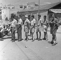 jewish insurgency British army and jewish insurgency in palestine 1945-47 (studies in military and strategic history) by david a (director of the charterscharters pdf.