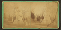 John P. Manny Monument, Rockford, Ill.?, by J. H. Wakeman.png