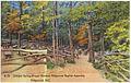Johnson Spring (Prayer Garden) Ridgecrest Baptist Assembly, Ridgecrest, N.C. (5811485465).jpg