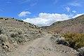 Jumbo Grade Trail - panoramio (8).jpg