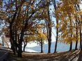 KASTORIA- lake (22).jpg