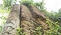 Kadia Bari Mound BRI 1240.jpg