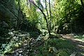 Kaltbrunnental - panoramio (5).jpg
